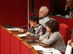 Comitati in audizione in Sala Rossa
